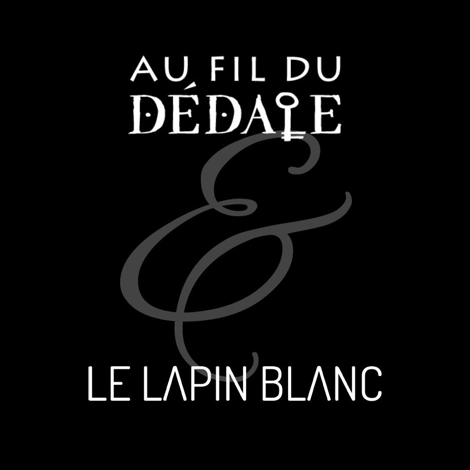 Book de réalisations d'escape game sur-mesure - Le Lapin Blanc & Au fil du dédale